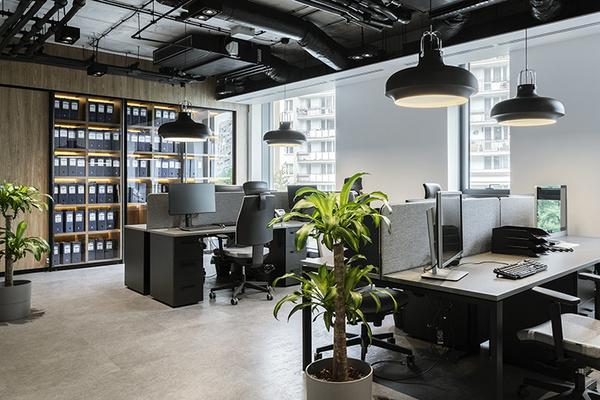 Bố trí văn phòng với cây xanh sẽ đem lại một không gian mát mẻ, trong lành