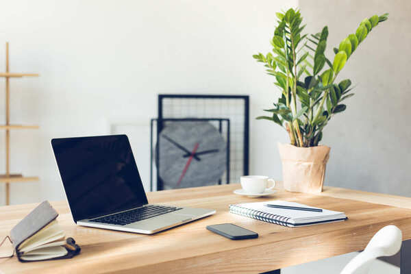 Trang trí cây xanh cho bàn làm việc giúp thanh lọc không khí, giải tỏa những căng thẳng